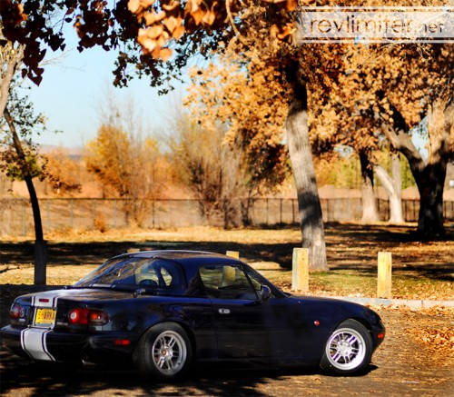 """I couldn't title this post """"Hardtop Season"""" without a decent shot of the hardtop."""