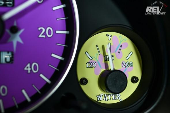 Fluttershy water gauge.