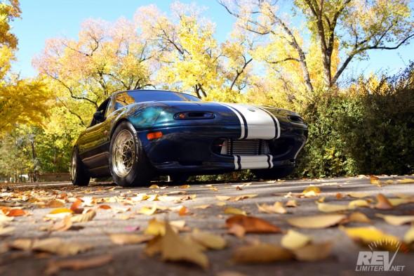 Leaf season.